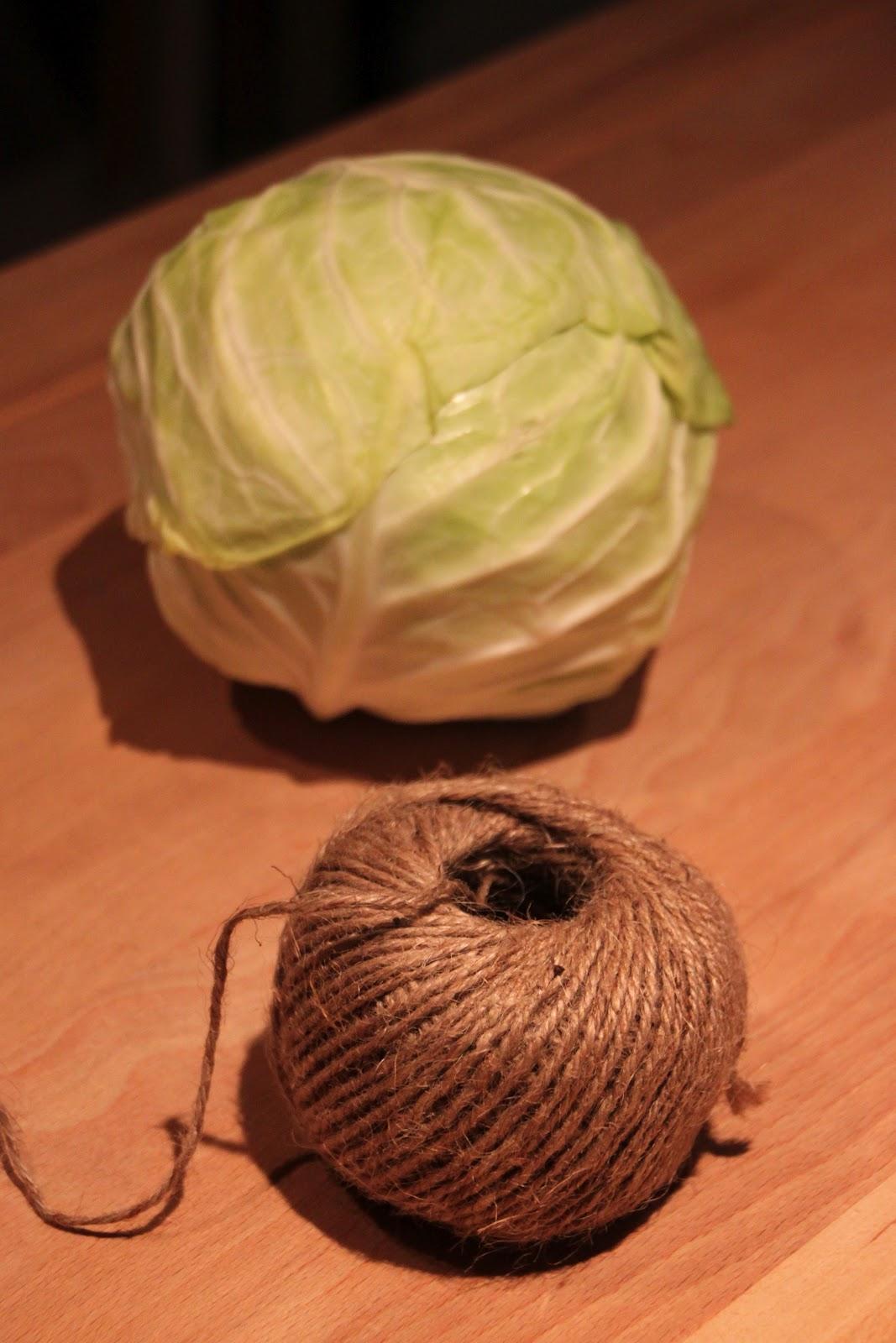 cabbage pinata tilly u0027s nest