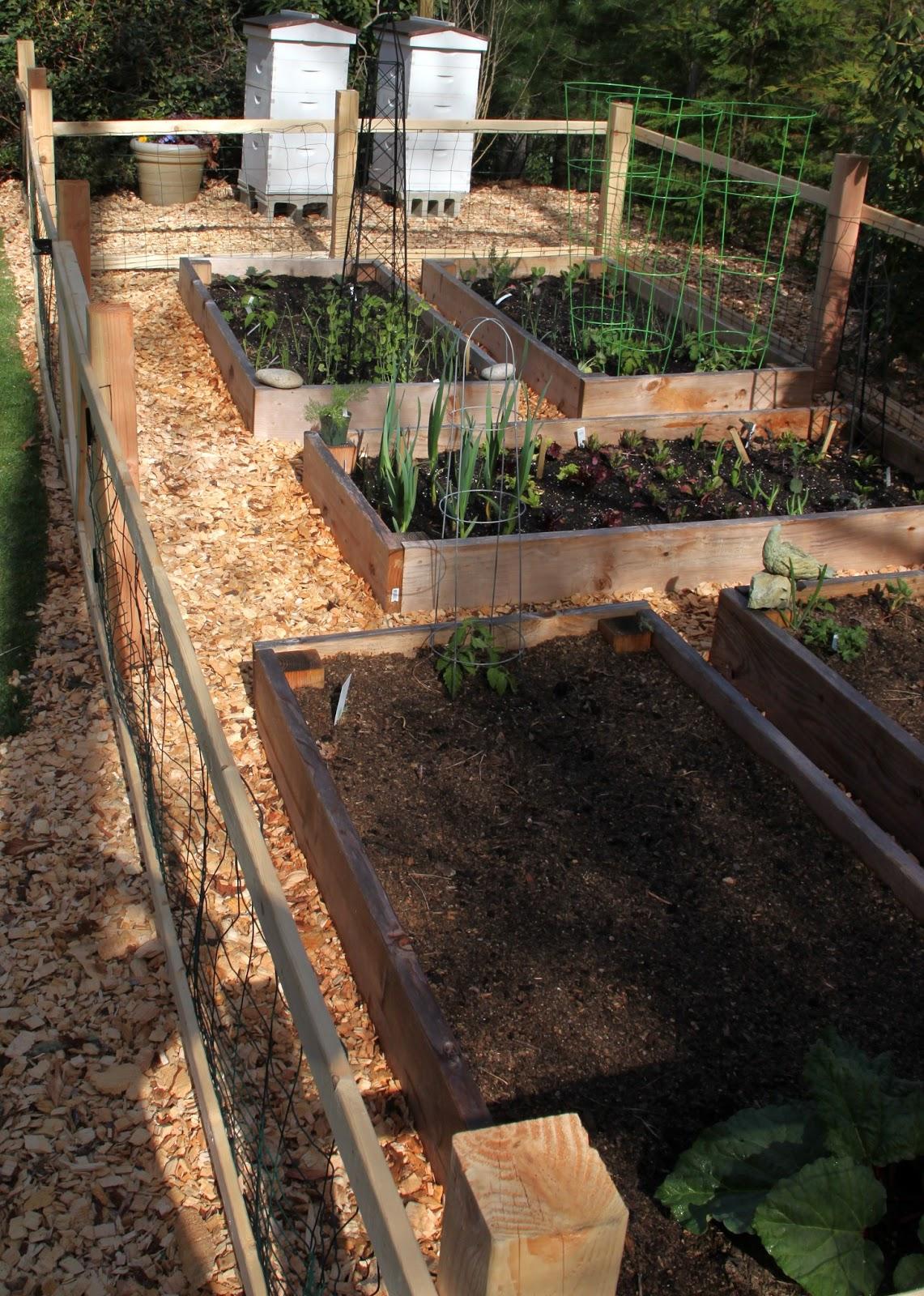 Merveilleux A Simple Garden Fence