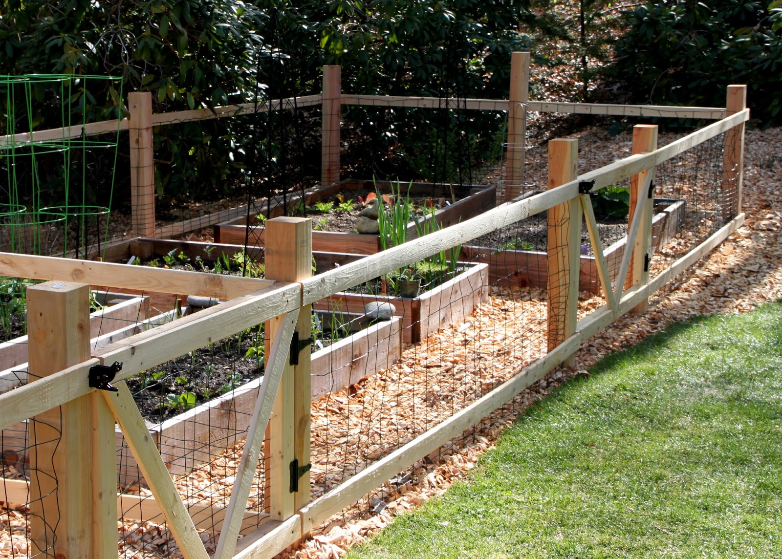 Simple Garden Fence Ideas green lawn small garden simple fences ideas A Simple Garden Fence